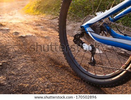 Wheel mountain bike bicycle detail in a sunny day - stock photo