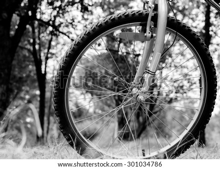 Wheel of sports mountain bike on nature background black and white - stock photo
