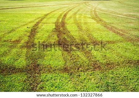 Wheel print on grass field - stock photo