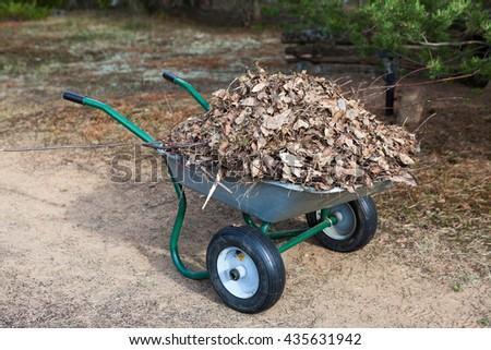 Wheelbarrow stands on backyard full of dry brawn leaf - stock photo