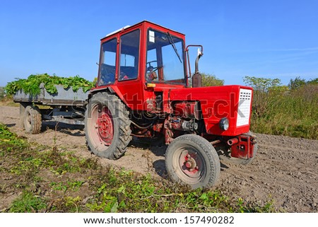 Wheeled tractor in the field