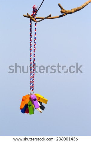 Whistle multicolored - stock photo