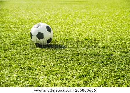 White and black Soccer ball or football ball lie on green grass field background Sport backdrop Empty space for inscription - stock photo