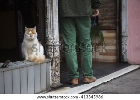 White and orange cat sitting next to a man with green pants