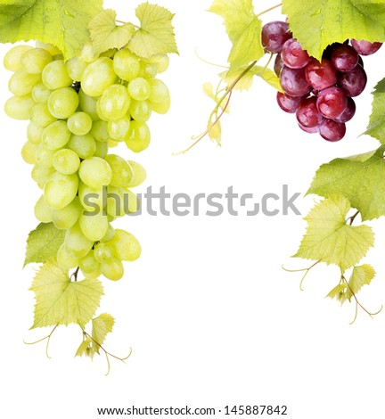 white and pink grape isolated on a white background - stock photo