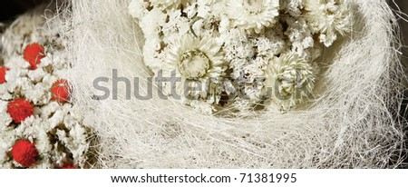 White and red flowers bouquet - stock photo