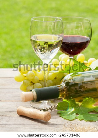 White and red wine glasses and bottle with bunch of grapes in sunny garden - stock photo