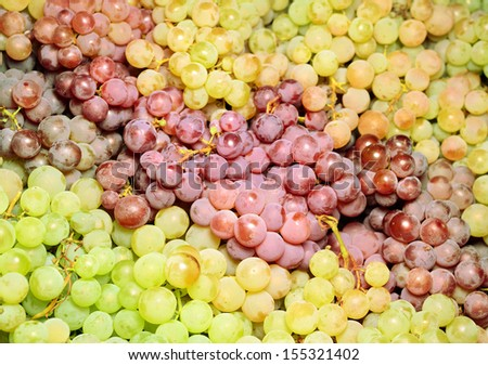 White and red wine grapes in the market  - stock photo