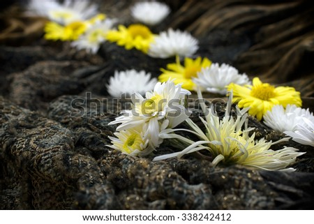 White and yellow flowers on rustic, canvas background