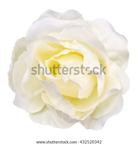 white artificial flower isolated, beautiful decoration,top view,summer and spring concept