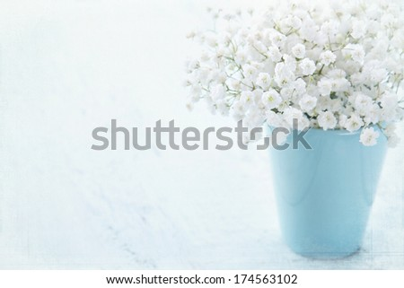 White baby's breath flowers in a vase on light blue textured vintage background - stock photo