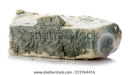 White background studio image of a decayed rotten cheese.