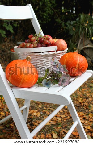 White basket full of red juicy apples and grapes on a white chair - stock photo