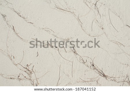 White Beach Sand Texture With Pine Leave E