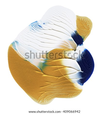 white,blue  and gold design element,hand painted,acrylic - stock photo