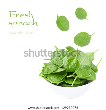 white bowl with fresh spinach and falling leaves isolated on a white background - stock photo