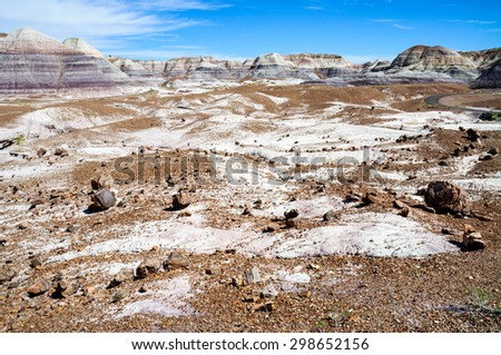 White, Brown Landscape of Petrified Forest National Park - stock photo