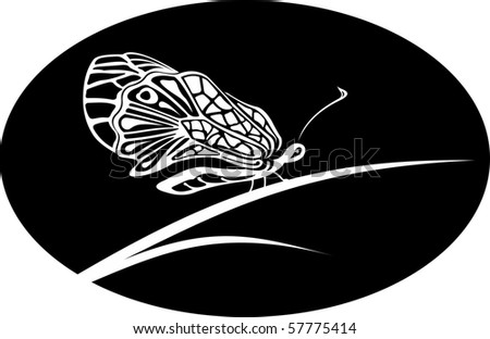 White butterfly on black round or oval background, background, logo, shape, engraving