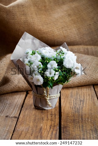 white Campanula terry flowers in paper packaging, on sackcloth, wooden background - stock photo
