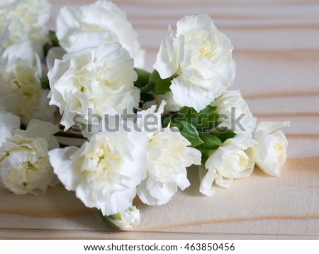 white carnation on wooden background