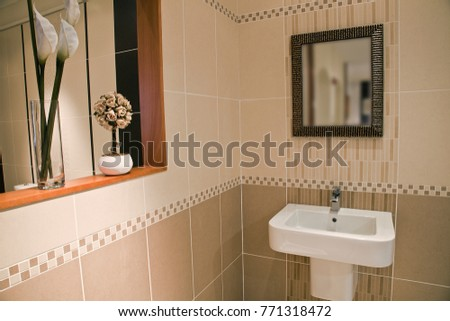 white ceramic toilet sink and square mirror and vases