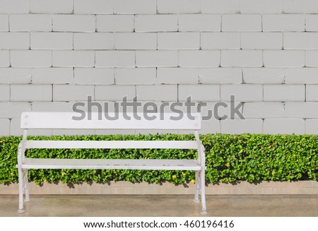 white chair  at green bush fence and concrete floor on white brick wall background : exterior and background concept - stock photo