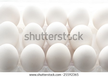White chicken eggs in plastic container with back lighting.