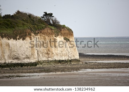 White cliff and beach at Pegwell Bay in Kent