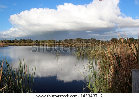 White clouds reflected in Big Swamp Bunbury Western Australia on a late afternoon in early winter.