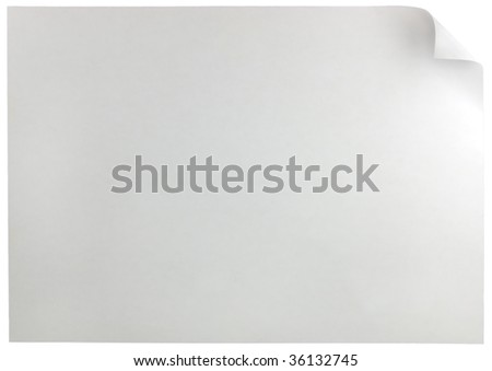 White Curled Edge Page Curl, isolated - stock photo
