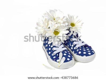 white daisy bouquet in blue and white polka dot sneaker isolated on white - stock photo