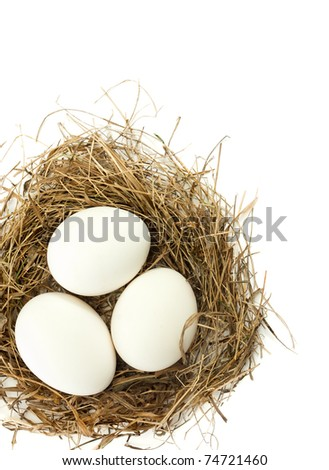 White egg in the nest, the white background - stock photo