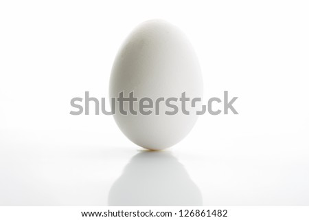 White egg isolated on white background - stock photo