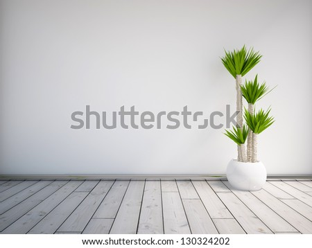 white empty interior with a palm - stock photo