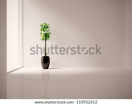 white empty interior with a tree - stock photo