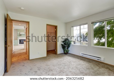 White  empty room with brown carpet floor. Room decorated with palm tree