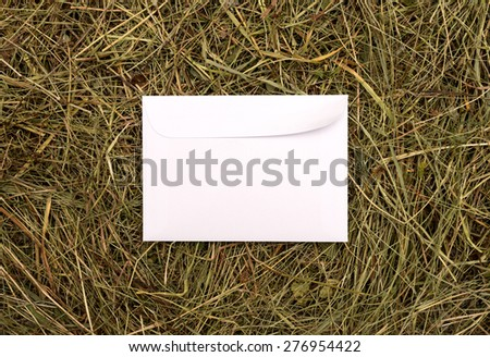 white envelope on a background of hay - stock photo