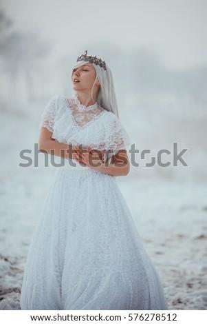 White Fairytale Princess Frozen World Vintage Stock Photo 576278512 ...