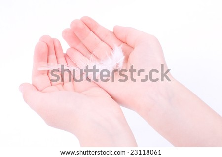 White feather in child hands - stock photo