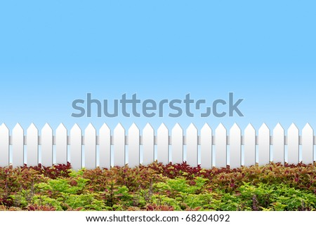 White fence and colorful shrub on blue sky