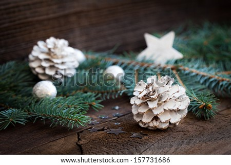 white fir cone and fir branch  - stock photo