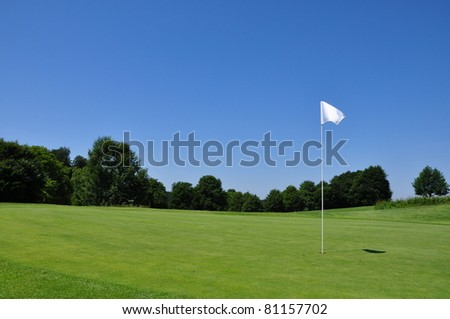 white flag on the green at a golfclub