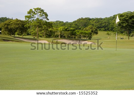 White flag on the green on a jungle golf course