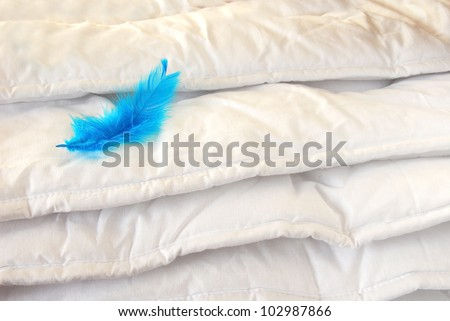 white folded cotton duvet background with blue feather - stock photo