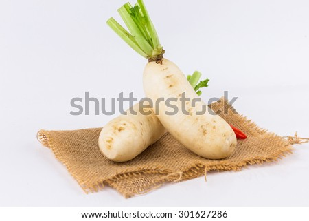white fresh radishes on white background in market,Organic local  radish vegetables for sale at  asian marketplace - stock photo