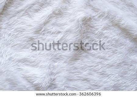 White Fur Texture Background - stock photo