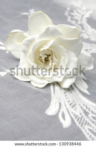 white Gardenia and wedding lace - stock photo