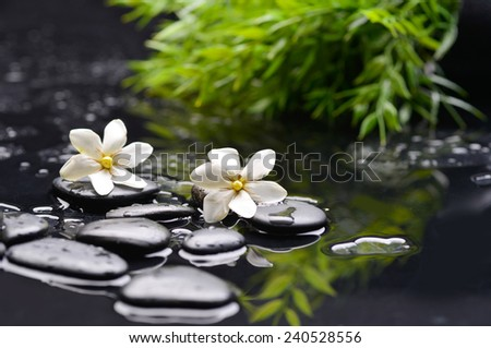 white gardenia with green leaf and therapy stones  - stock photo