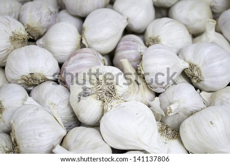 White garlic with skin in feed market, seasoning and food