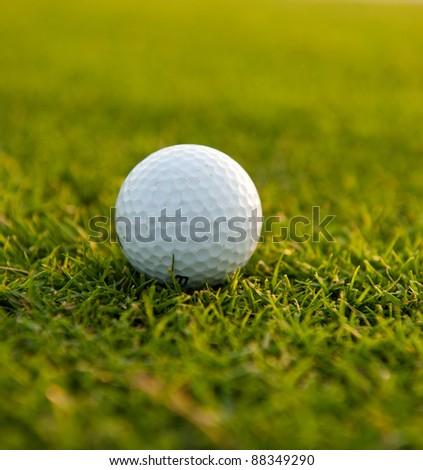 White golf ball against the green grass - stock photo